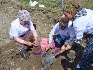 Hakkarili kadın çiftçiler toprağa hayat veriyor