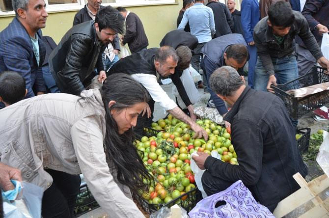 Hakkari'de ucuz sebze izdihamı! galerisi resim 1