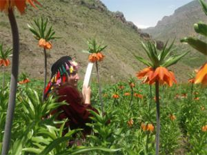 Hakkari'de doğaseverlerin 'Ters Lale' buluşması