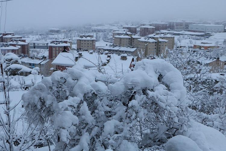 Gazeteci Mehmet Özkan Objektifinden Hakkari'de kış! galerisi resim 1