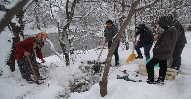 Hakkari'de Kar altından peynir çıkardılar