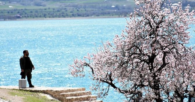 Van Akdamar Adası'nda bahar güzelliği