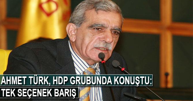 Ahmet Türk: Tek seçenek barış