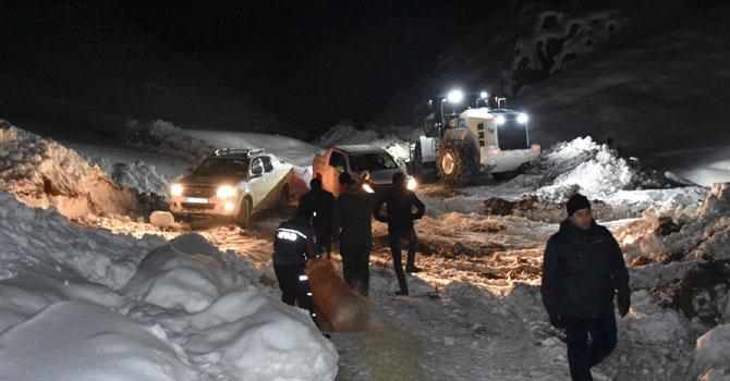 Hakkari'de dağlık alanda mahsur kalan atlar kurtarıldı