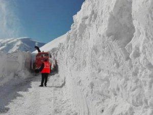 Tanin Tanin Dağları'nda karla mücadele