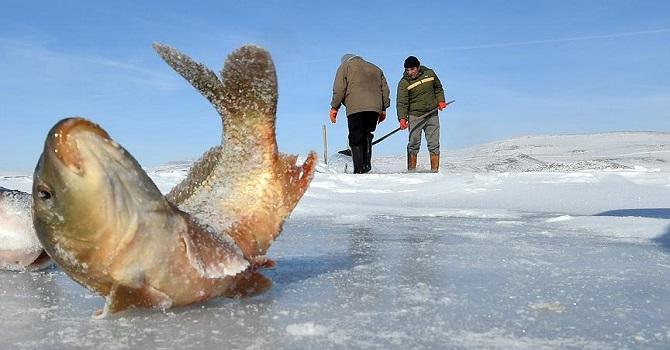 Hakkari-Van karayolunda Eskimo usulü balık avlıyorlar
