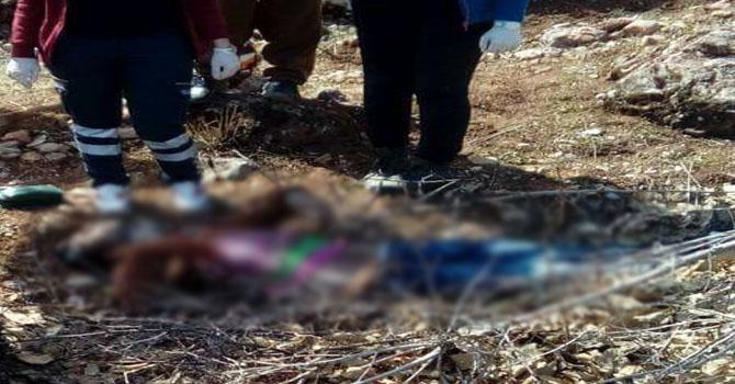 Şemdinli'de bir ceset bulundu