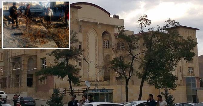 Hakkari'de Asırlık ağaç kesildi