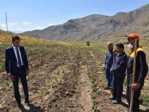 Genel Sekreter Tevfik Kumbasar projeleri denetledi!