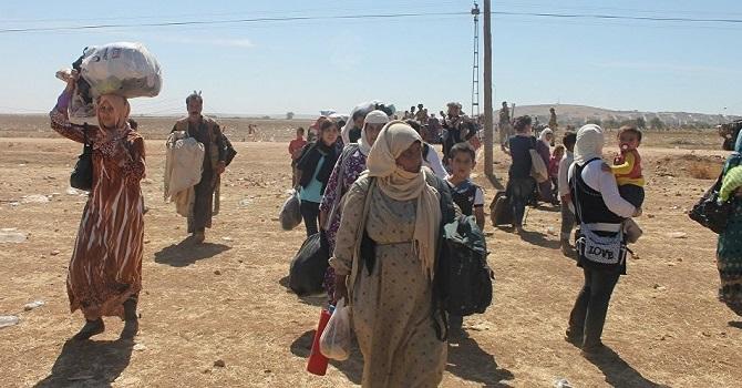 IŞİD, 320 Iraklıyı serbest bıraktı