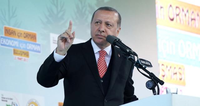 Cumhurbaşkanı Erdoğan: Şu 16 Nisan bir bitsin