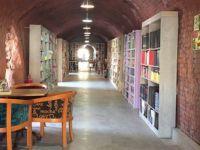 Çöpten topladıkları kitaplarla kütüphane kurdular