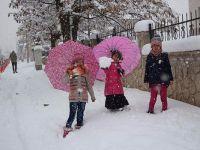 Van'ın 3 ilçesinde eğitime kar engeli