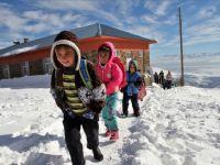Bitlis ve Van'da eğitime kar engeli