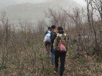 Şifalı ot için kilometrelerce yol yürüyorlar