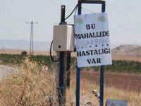 Diyarbakır'daki sağlık örgütlerinden şarbon uyarısı