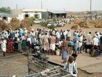 Yemen'de kıtlık baş gösterdi: Ot yemeye başladılar