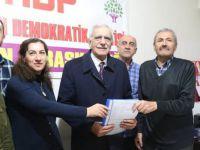 Türk, HDP'den Belediye Başkan aday adayı