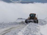 Hakkari'de 3 köy ile 13 mezra yolu kapalı!