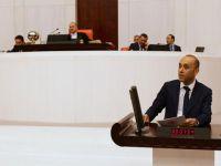 HDP'li Dede: Ekonomik krizin sorumlusu iktidardır VİDEO
