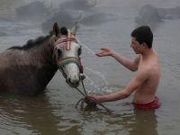 Dondurucu soğukta atlarıyla yüzüyorlar