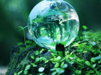 İklim korumada en önemli beş adım