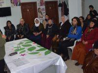 HDP Çukurca'da kadınlar günü paneli düzenledi