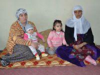 Hakkarili Demir ailesinin yaşam mücadelesi!