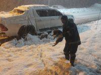 Hakkari'de donmak üzere olan yavru köpek kurtarıldı