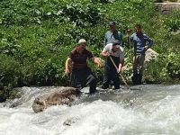 Yüksekova Akalın köyü 10 gündür susuz