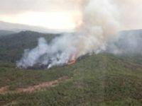 Köyceğiz'deki yangın kontrol altına alındı