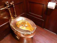 5 milyon dolarlık altın klozeti saraydan çaldılar