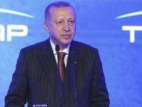 Erdoğan, TANAP Avrupa Bağlantısı açılışında konuştu