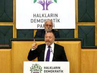 HDP'li Temelli'den hükümete 'Tiyatro' tepkisi