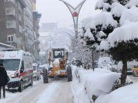 Hakkari'de 87 yerleşim yerinin  yolu ulaşıma kapalı