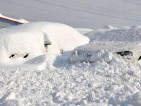 Yüksekova'da evler ve arabalar kara gömüldü