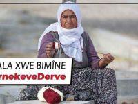 HDP'den evden çıkmayın kampanyası: #DernekeveDerve