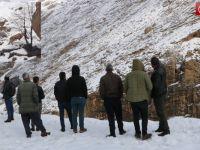Hakkari'de yiyecek bulmaya çalışan dağ keçileri görüntülendi