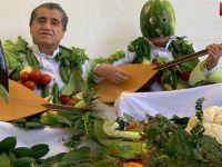 Hakkarili Aydın Aydın'dan koronaya karşı sebze ve meyve kamufleli şarkı
