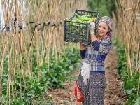 Çukurca'da Ekolojik Tarım II Cihat Ayar yazdı...