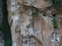6 bin yıllık rölyef yerinden sökülmeye çalışıldı