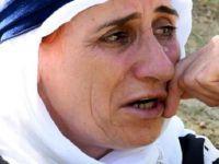 Yüksekova'da 30 koyunu öldü, '18 kişilik ailemizin tek geçim kaynağıydı' diyerek ağladı