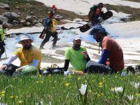 Haziran ayında Hakkari'de Snowboard ve Kayak gösterisi