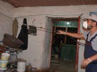 Hakkari'de yılan korkusu ev boşalttı
