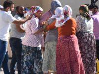 Şanlıurfa'da tarım işçilerinin minibüsü devrildi: 1 ölü, 25 yaralı