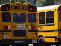 ABD'de çocuklarda vaka oranları Temmuz ayının son iki haftasında yüzde 40 arttı