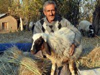 Yüksekovalı 'Sarı Kız'ın sahibi Atasoy artık çok mutlu