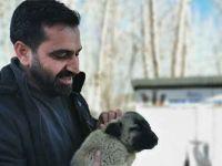 Sokak hayvanları için makam aracını sattı
