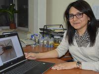 Bilimsel Çalışmalarda son hız Hacı Tansu yazdı...