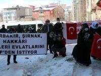 HDP Hakkari il örgütü önünde oturma eylemi düzenlediler